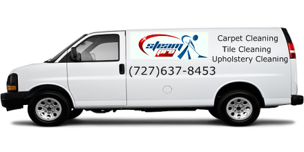carpet cleaners ruskin